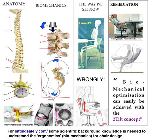 For sittingsafely.com/ some scientific background knowledge is needed to understand the 'ergonomics' (bio-mechanics) for chair design.